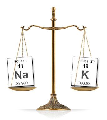 sodium-potassium-scale.jpg